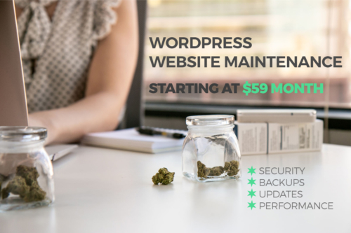 WordPress website maintenance for cannabis
